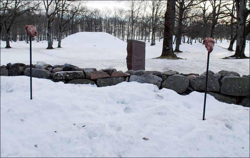 MAKABERT SYN: To blodige sauehoder var plassert på staker utenfor Borreparken lørdag morgen. Foto: Bjørn Nilsen, Gjengangeren